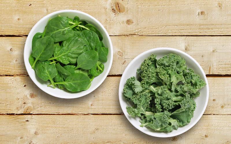 Supergreens Kale plant based dog food