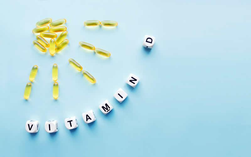 vitamin d vegan dog food