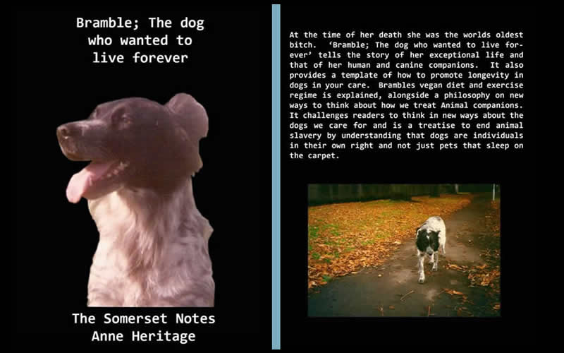 Bramble the vegan dog who wanted to live forever