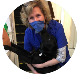 Vet Arielle wearing a facemask at work and being licked by a black Labrador
