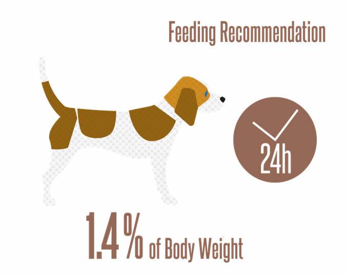 Amount of Greta dog food to feed/day