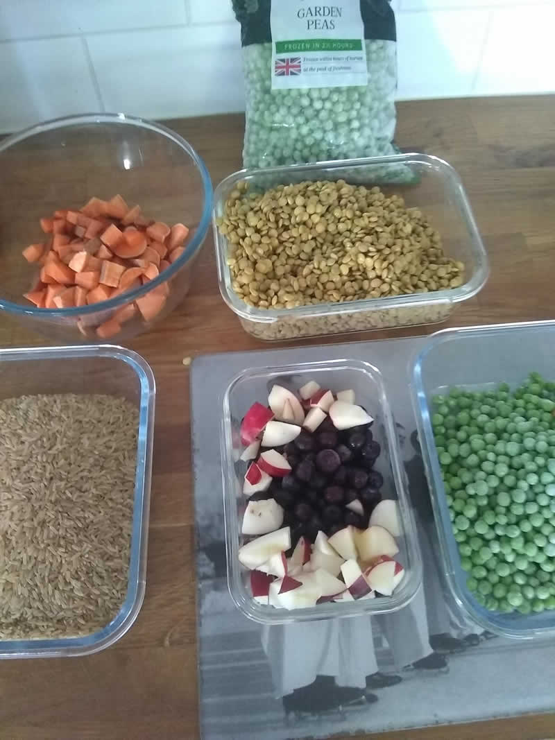 Chopped apples and vegetables for homemade plant-based puppy diet